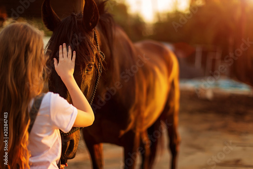 Photo  Young blonde girl stroking a brown horse.