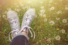 Silver Sparkly High Top Tennis Shoes In A Field Of Dandelions