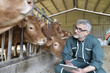 Cow breeder checking on livestock and using digital tablet