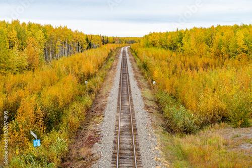 紅葉と線路