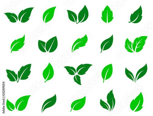 Fototapety, obrazy: set of green leaves icons