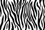 Fototapeta Zebra - Zebra stripes black and white abstract background.