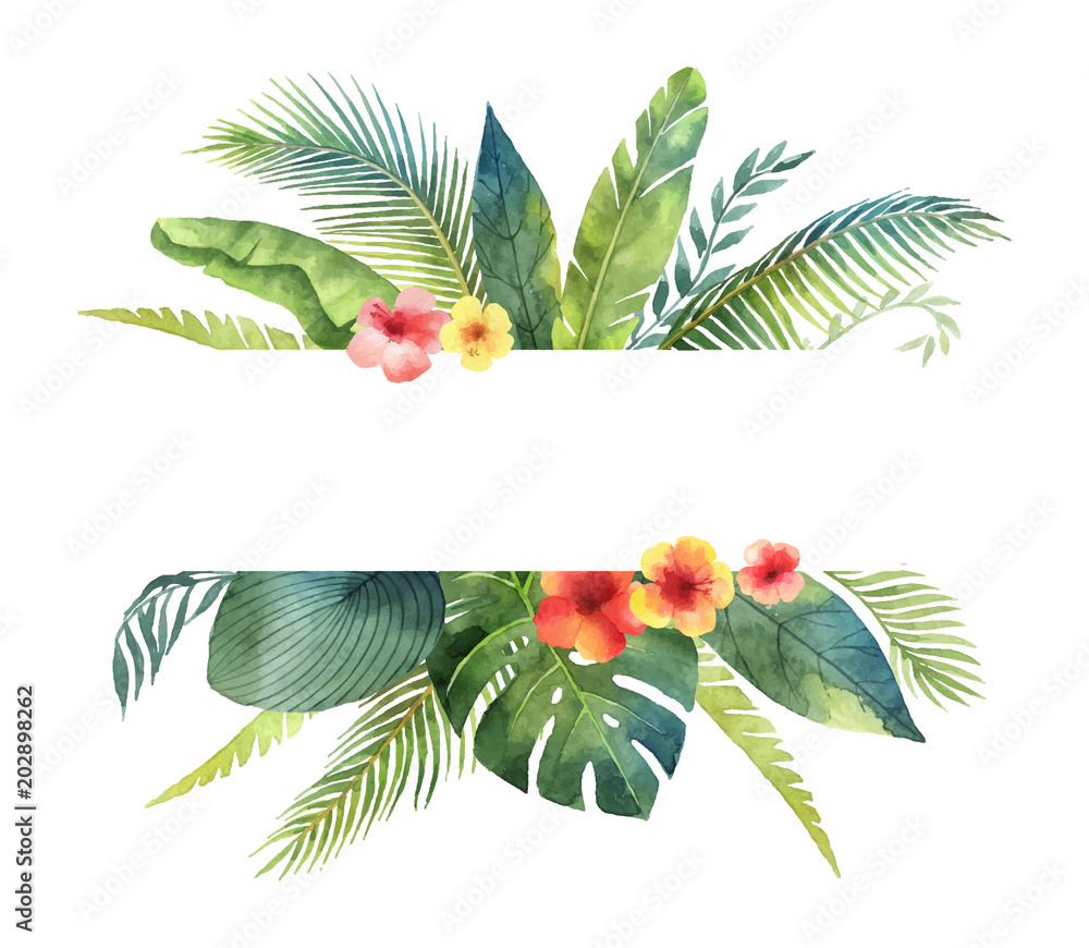 Fototapeta Watercolor vector banner tropical leaves and branches isolated on white background.