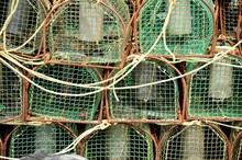 Pile Of Commercial Fishing Net...