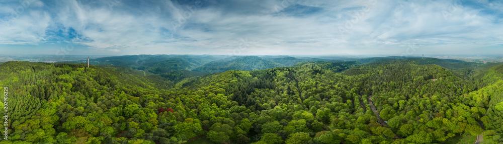 Fototapety, obrazy: 360° Luftbild Panorama Pfälzer Wald