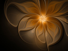 Abstract Glowing Flower On A B...