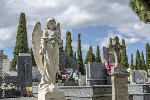primer plano de estatua de ángel en el cementerio