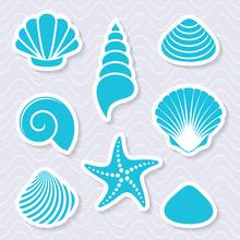 Simple Vector Sea Shells And Starfish