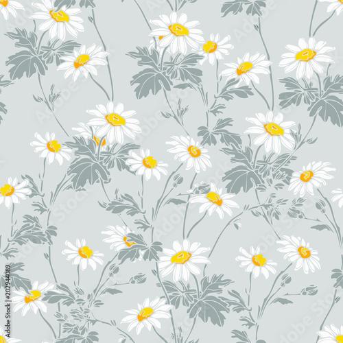 Wzór kwiatów letnich chamomiles
