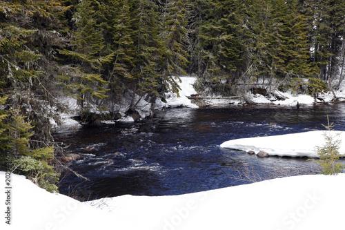 Staande foto Rivier rivière au printemps