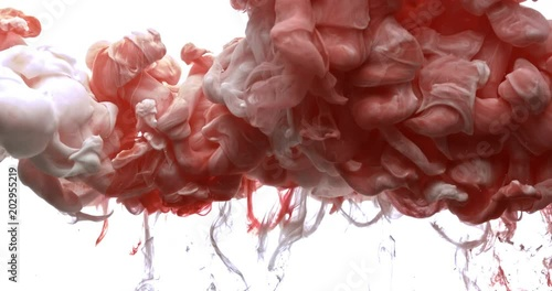 Photo  Red and white ink spraying in water on white background shooting with 4k high speed camera