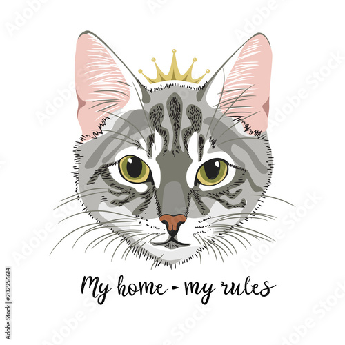 Fotografía Grey Cat with crown princess queen my home my rules