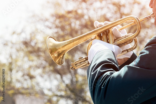 Fotomural Closeup of a military musician in green uniform and white gloves playing on a trumpet outside