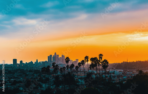 Fényképezés Downtown Los Angeles skyline at sunset with palm trees in the foreground