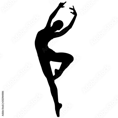 Fotografie, Tablou  Ballerina dancer silhouette, Ballet dance clipart, Ballerina vector, Svg, png, e