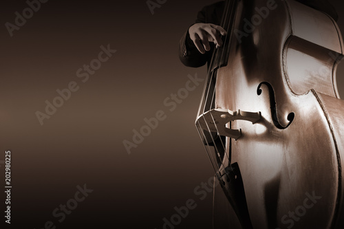 Photo sur Aluminium Musique Double bass player contrabass playing. Jazz bassist
