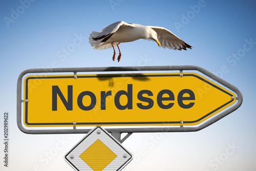 Wegweiser Nordsee Schild, blauer Himmel und Möve im Anflug