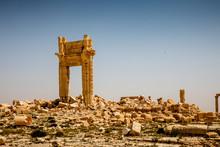 Palmyra Today