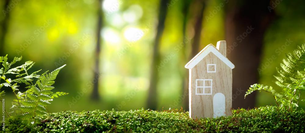 Fototapety, obrazy: Eco house concept