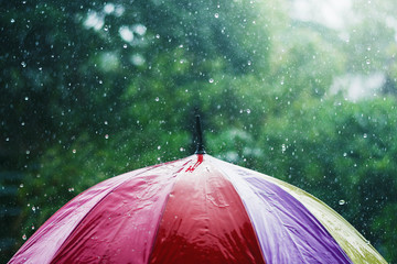 rain drop falling onto colorful umbrella  and green background
