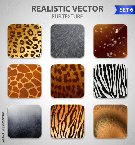 Fotografie, Obraz  Wild Animals Fur Texture Set