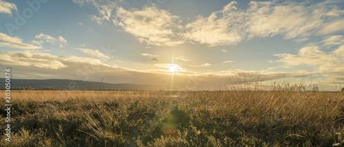 Sonnenuntergang im Moor, Landschaft Billede på lærred