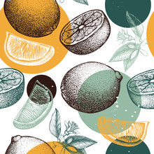 Vector Seamless Pattern With Ink Hand Drawn Citrus Fruit, Flowers, Slice And Leaves Sketch. Vintage Background With Lime  Plants.