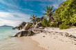 beach with palm tree and granite rocks Seychelles