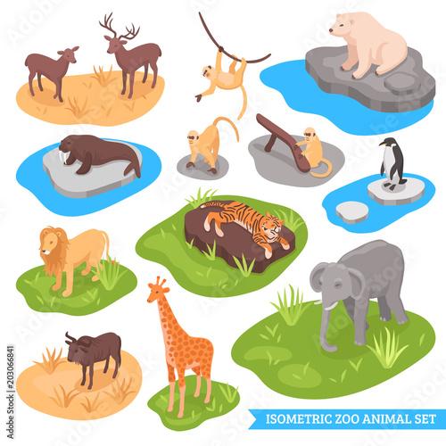 Vászonkép Isometric Zoo Animal Set