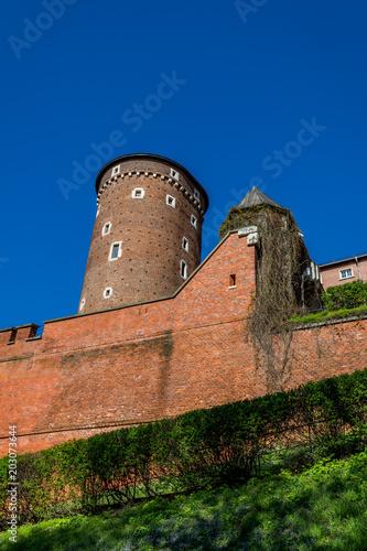 Deurstickers Kasteel Le château du Wawel à Cracovie