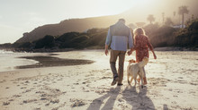 Senior Couple With Pet Dog At ...
