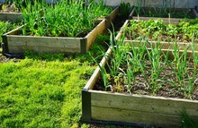 Raised Bed Container Vegetable Garden In Spring
