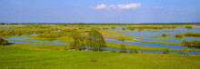 Panoramic View Of Wetlands Cov...
