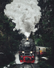 Famous Sightseeing Train In Sw...
