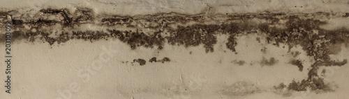 Fototapeta wet on the wall panorama