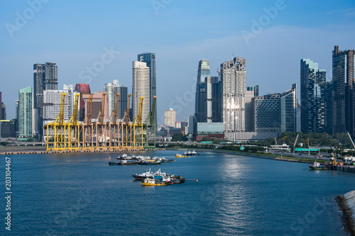 View of the Harbor Cranes and Singapore City Poster