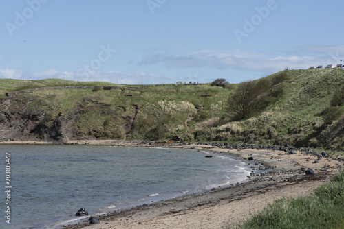 Foto op Plexiglas Khaki North Berwick Scotland UK