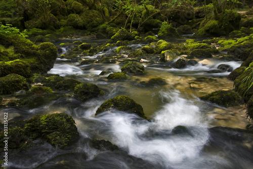 Fotobehang Rivier Rivière, remous et mousse verte sur les rochers