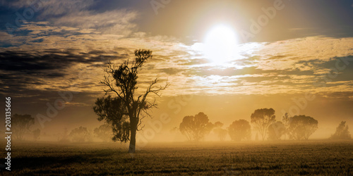 фотография  Morning fog with the sun shining through the clouds on a rural Australian property