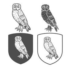4306378 Vector Heraldic Shield...