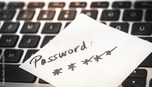 Fotomural World password day