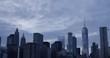 New York City Skyline with Bird Flying