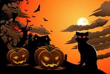 Scary Cat On Halloween Wallpap...