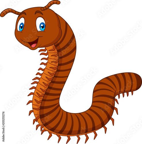 Fényképezés Cartoon happy millipedes