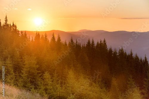 Sunset in the mountains with forest and big shining sun on dramatic sky #203221027