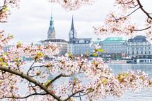 View Of Hamburg Townhall - Rat...