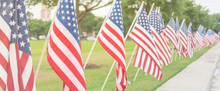 Panorama View Long Row Of Lawn American Flags On Green Grass Yard Blowing. Groups Of Flying USA Flags At An Urban Park Along Concrete Pathway Street. Memorial Day Celebration In Katy, Texas, USA