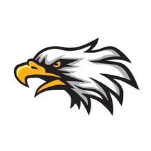 Furious Eagle Head Logo Mascot...