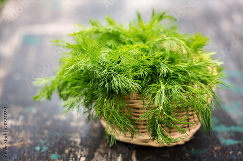Fotografie, Tablou bunch of fresh dill on the dark