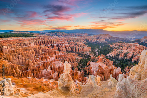 Bryce Canyon at Dawn Fotobehang
